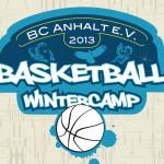 Logo Camp 2013